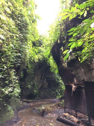 """トゥカッ・チュプンの滝へ行ってみました。その2 \""""Jalan2 ke Air Terjun Tukad Cepung II""""_a0120328_18563867.jpg"""