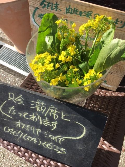 今朝は 昨晩の雨で玉葱に水遣りしなく大丈夫 ラッキーでした  丁度いい保水状態です_c0222448_12554271.jpg