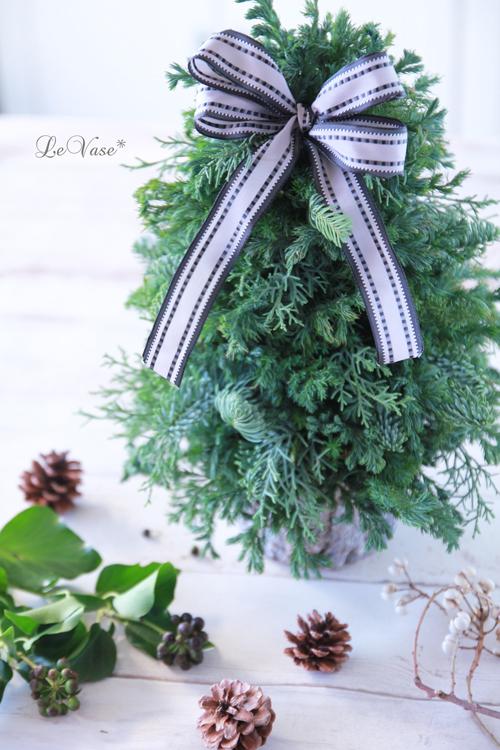 恒例の針葉樹のクリスマスツリー_e0158653_12405466.jpg