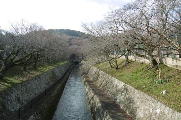 三井寺_f0205367_19103632.jpg