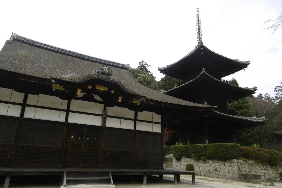 三井寺_f0205367_19215176.jpg