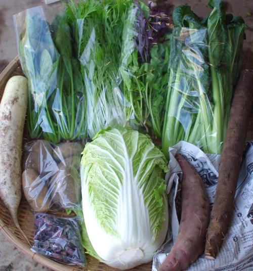 今週の野菜セット(12/6~12/10着)最終回_c0110869_132596.jpg