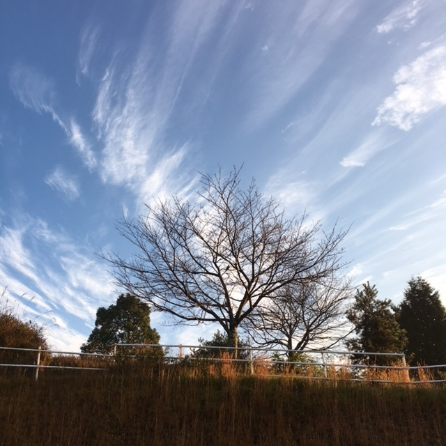 空に魅せられて_c0334574_19423524.jpg