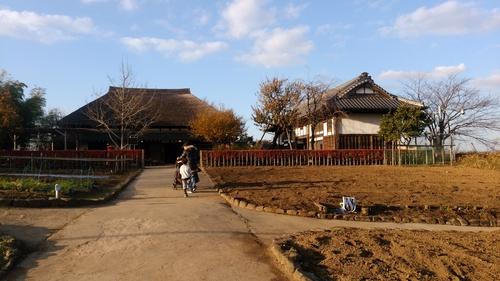 足立区都市農業公園に行ってきました《子連れお出かけおすすめスポット》_e0030586_11402621.jpg