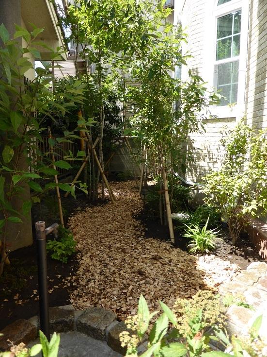 雑木の庭。晩秋の景色に。_e0356655_18075356.jpg