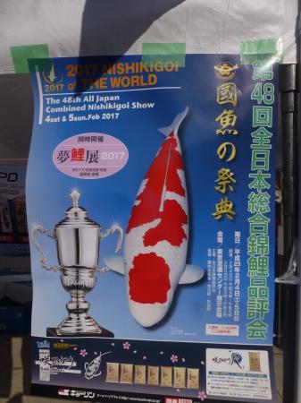 東京都上野シリーズ  上野公園で錦鯉品評会展示_b0011584_09374910.jpg