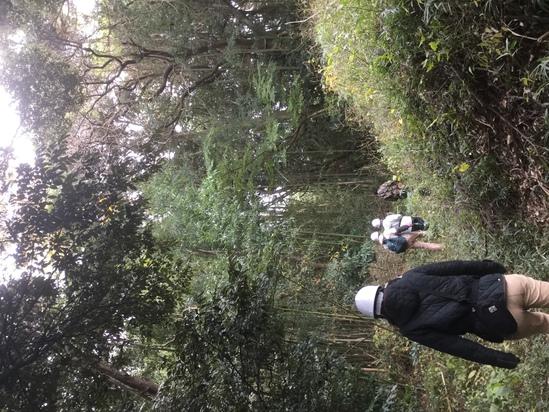 竹刈り!_e0143294_2151226.jpg