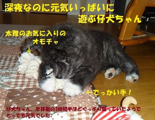 f0121712_10104617.jpg
