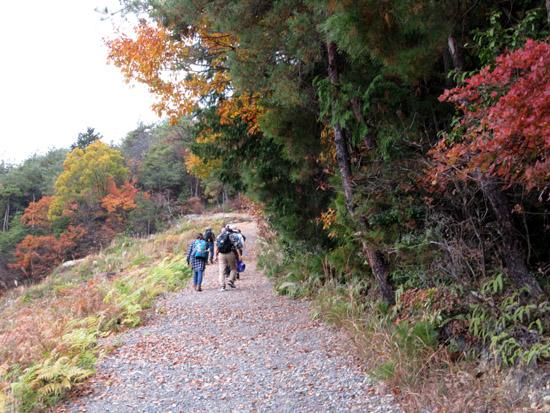 船山から京見峠・長谷川へ_e0048413_1604522.jpg
