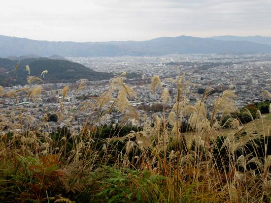 船山から京見峠・長谷川へ_e0048413_1613185.jpg