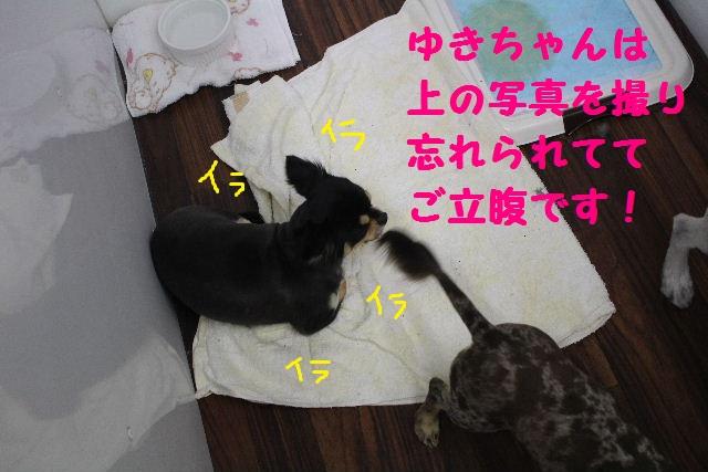 b0130018_14472141.jpg