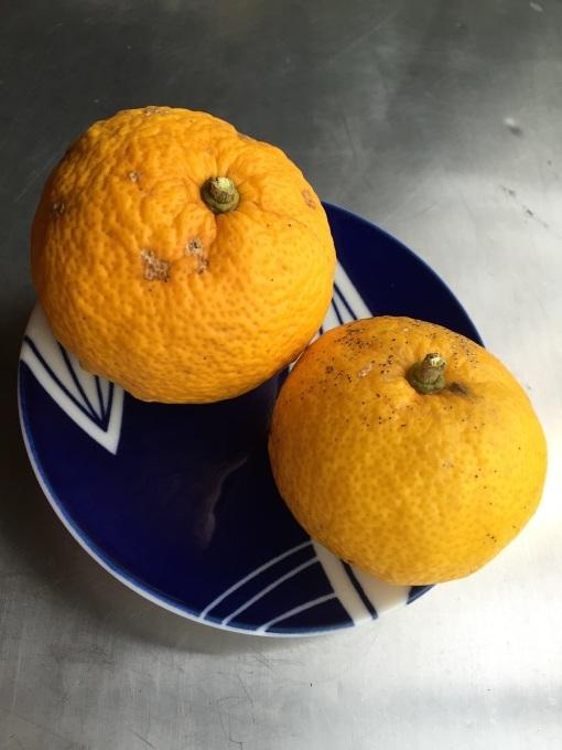 ゆずのかおり  #柚子 #冬 #ゆず #柑橘系_a0103940_16302805.jpg