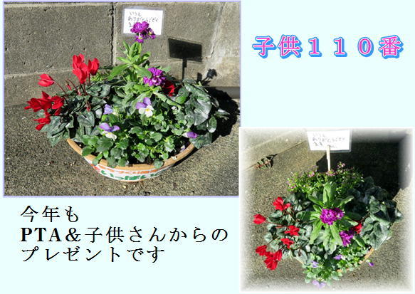 f0003174_14533417.jpg