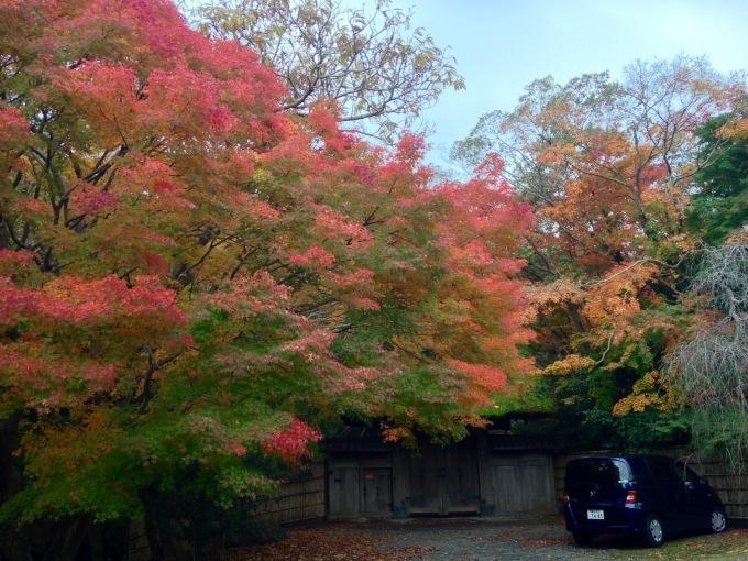 葉山の中でも紅葉が美しい@茅山荘_b0167282_16221804.jpg