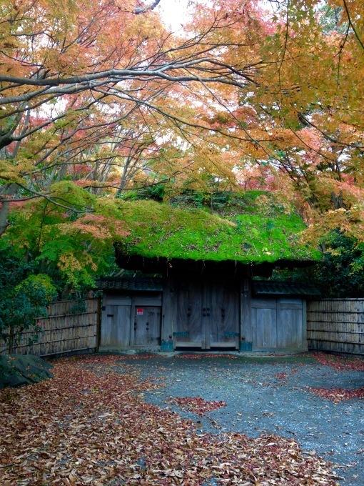葉山の中でも紅葉が美しい@茅山荘_b0167282_16225165.jpg