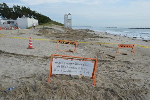 9/17 県北芸術祭へ。テアの鯨探訪と、海側へ。_a0216706_1995659.jpg
