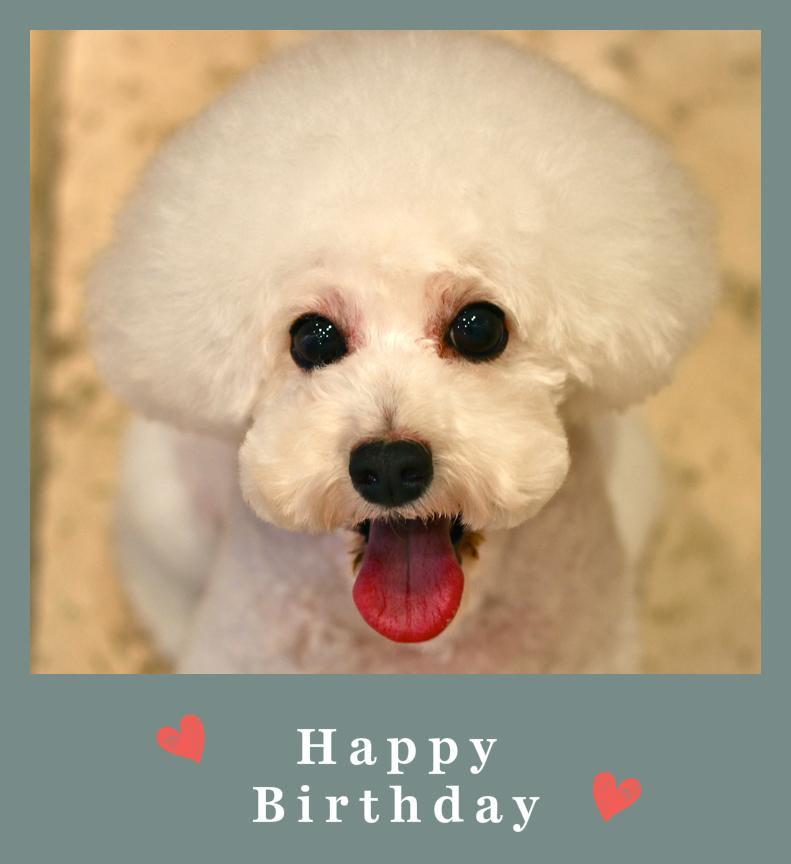Happy Birthday♡レオンくん_d0060413_19504619.jpg