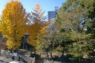 『マンダラぬりえでカラーセラピー@名古屋』レポート①_c0200917_10345765.jpg