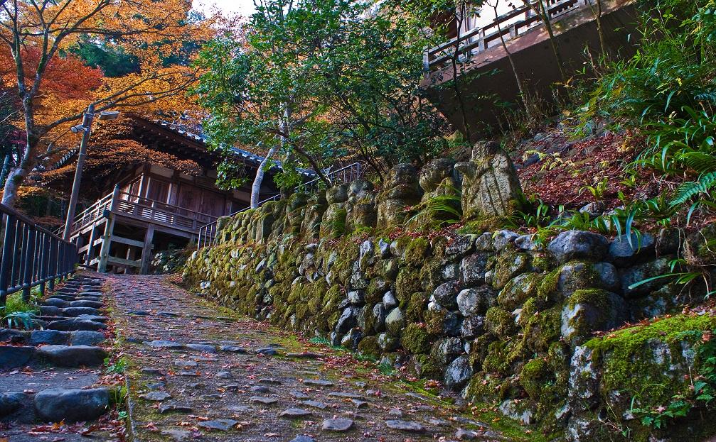 2016京都紅葉~愛宕念仏寺_e0363038_11141447.jpg