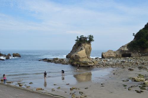 9/17 県北芸術祭へ。テアの鯨探訪と、海側へ。_a0216706_21252516.jpg
