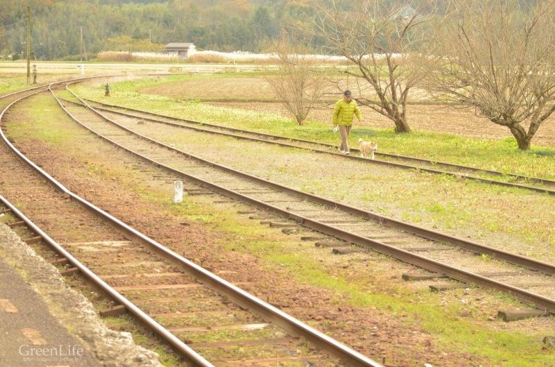 秋の遠足は小湊鉄道へ_f0321522_12091433.jpg