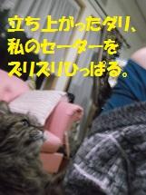 d0017084_928947.jpg