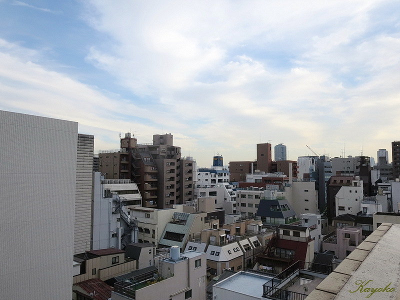 東京の宿_a0353839_01350440.jpg