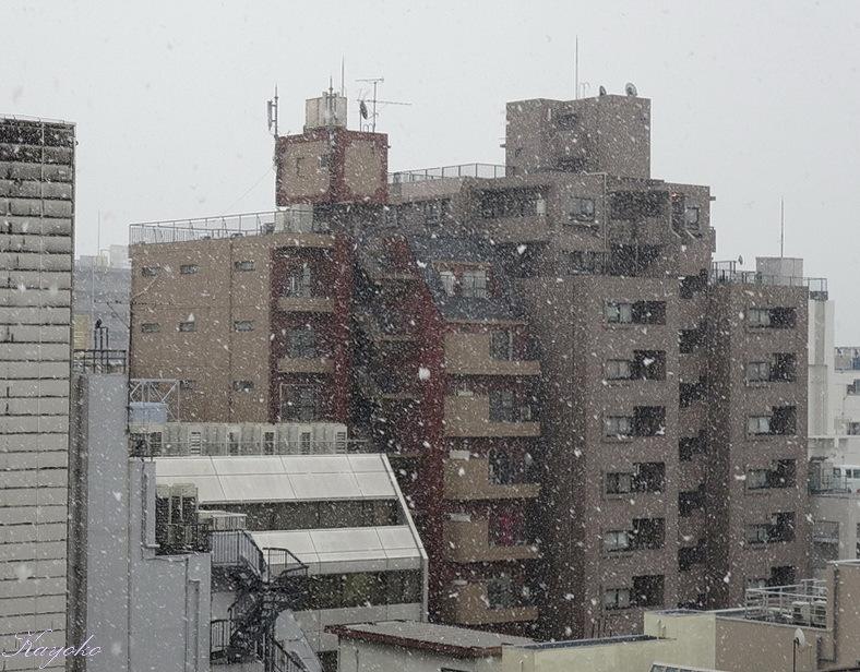 東京の宿_a0353839_01381059.jpg