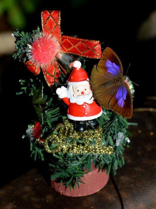 メリークリスマス_d0254540_19300405.jpg