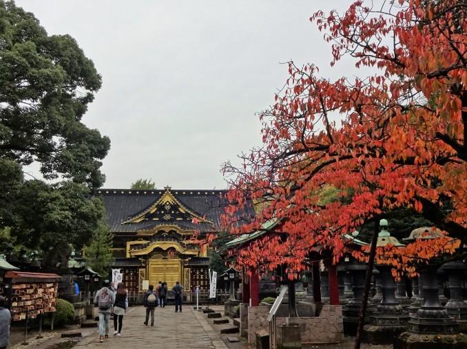 上野東照宮~精養軒ランチ~上野の森美術館~日暮里『羽二重団子』