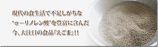 令和元年度産『焙煎白エゴマ粒』販売スタート!無農薬・無化学肥料で育てた「菊池水源産エゴマ」です!_a0254656_17203612.jpg
