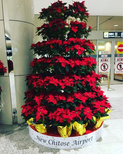 北海道⭐︎_c0151965_13244263.jpg
