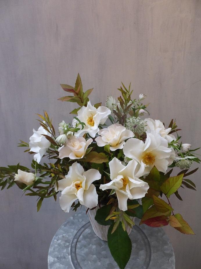 オークリーフ(初冬のバラのアレンジメント)_f0049672_18484623.jpg