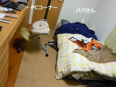 f0372998_20381194.jpg
