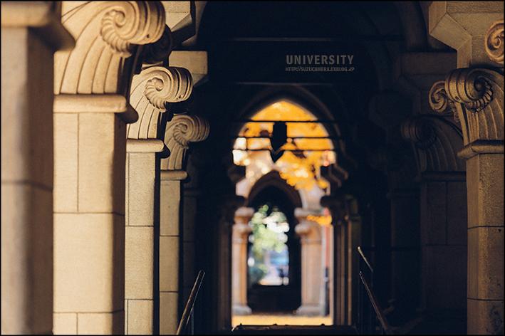 大学散歩_f0100215_00243358.jpg