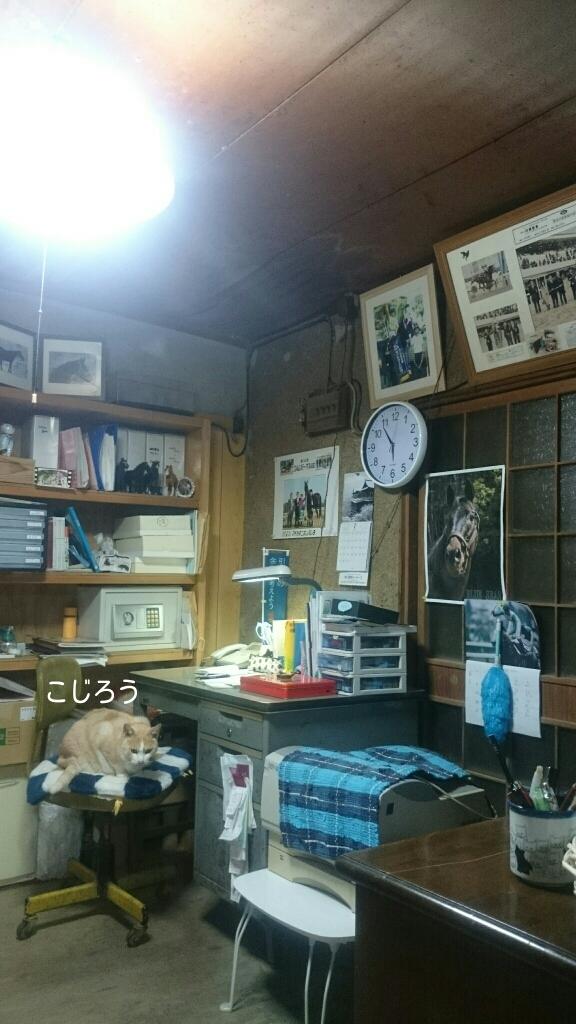 美浦の_b0187620_20374824.jpg