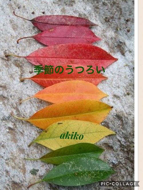 季節のうつろい_d0237757_177668.jpg