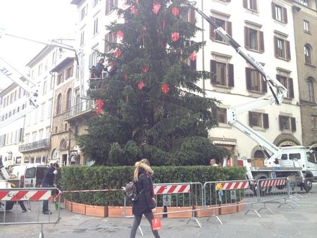 続・中央市場年末年始の時間割とクリスマス_a0136671_335076.jpg