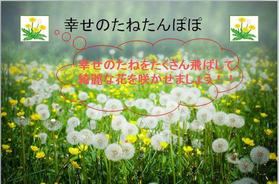 b0270977_14282458.jpg