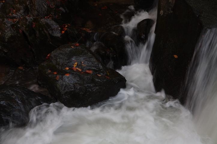 矢祭町 滝川渓谷の紅葉 ラスト_e0165983_8143238.jpg