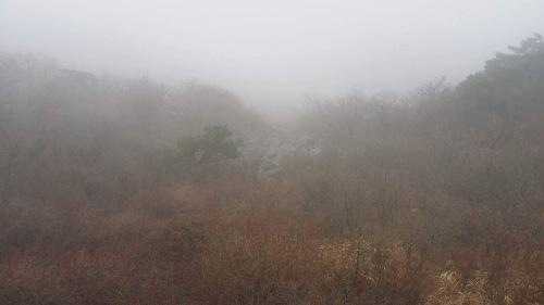 ワッタガッタ大邱 ⑰ピスル山へ登りました!_a0140305_03451658.jpg