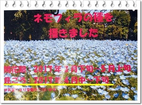 d0013149_00433996.jpg
