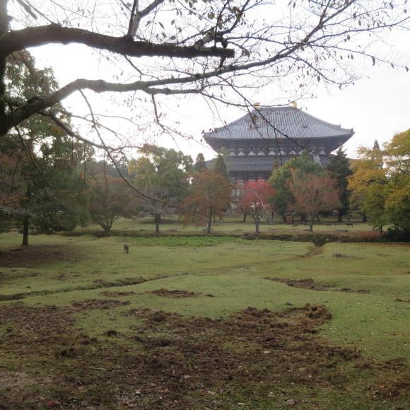 山の辺の道(北)を奈良から天理まで歩いた話0_c0001670_20114120.jpg