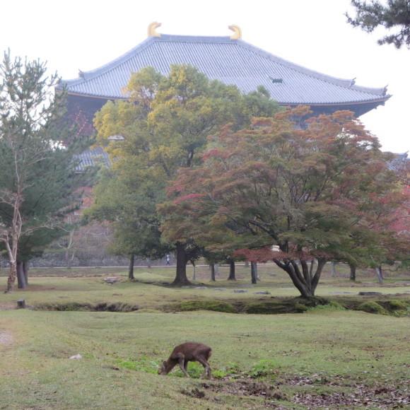 山の辺の道(北)を奈良から天理まで歩いた話0_c0001670_20115692.jpg