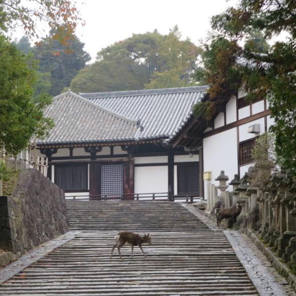 山の辺の道(北)を奈良から天理まで歩いた話0_c0001670_20121804.jpg