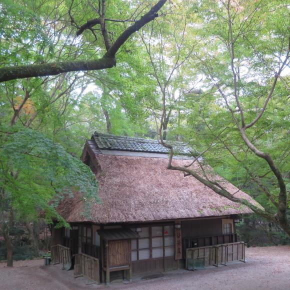 山の辺の道(北)を奈良から天理まで歩いた話0_c0001670_20124892.jpg