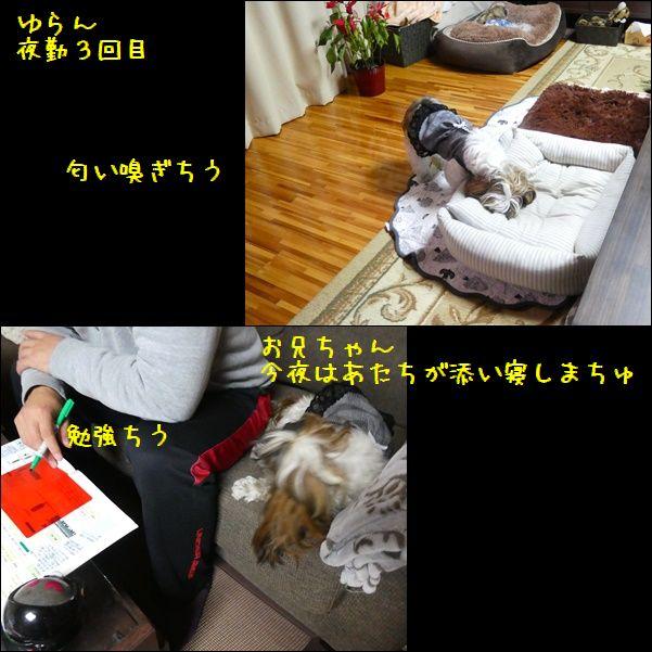 e0234881_2205220.jpg