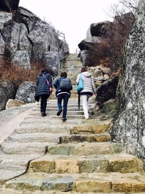 ワッタガッタ大邱 ⑰ピスル山へ登りました!_a0140305_03570701.jpg