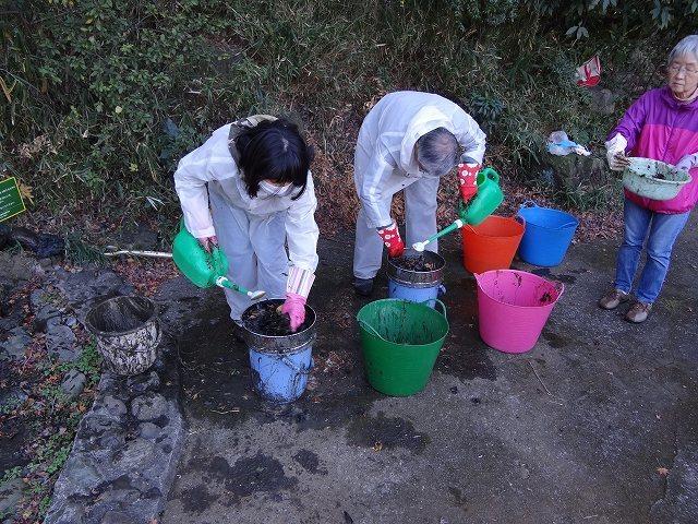 トンボ池の泥さらい&生きもの救出劇_b0049307_01362931.jpg