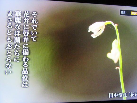 f0231709_20105397.jpg